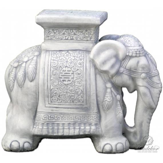 Orientalny Słoń