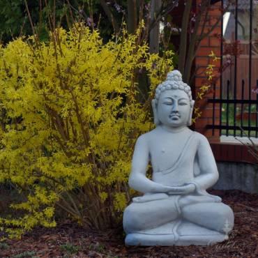Budda Siedzący w Medytacji