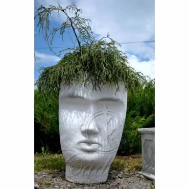 Donica Głowa Mężczyzny