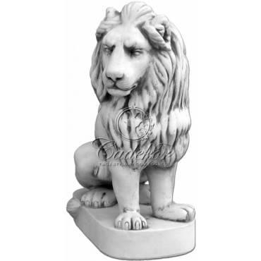 Lew średni prawy