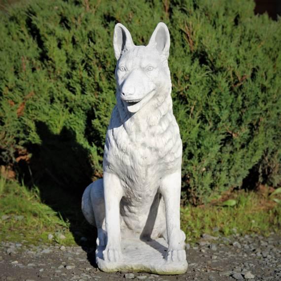 Siedzący wilczur