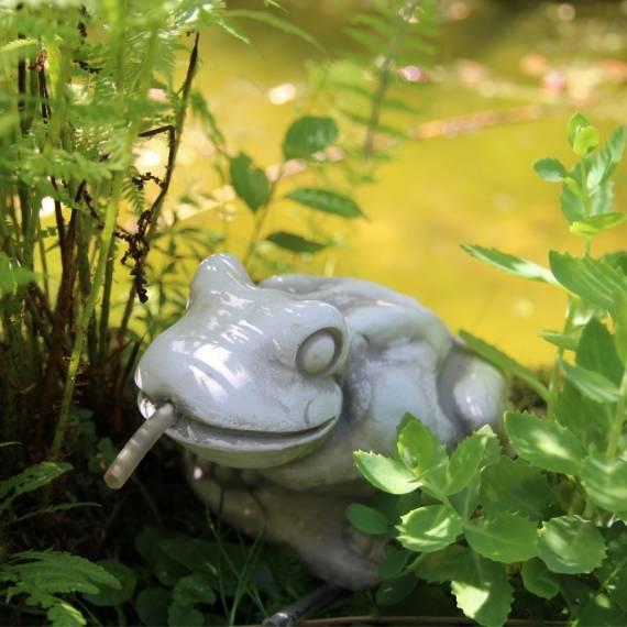 Żaba Wodna - element fontanny