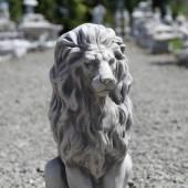 Der würdige Löwe