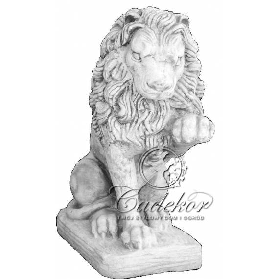 Lew z Łapą prawy